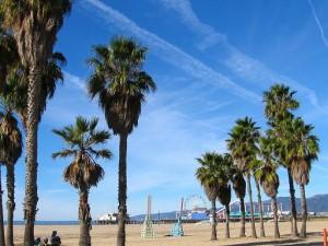 Search Engine Optimization in Santa Monica CA